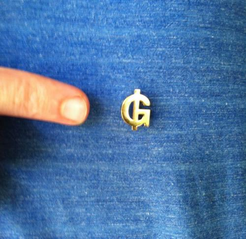 grails_pin
