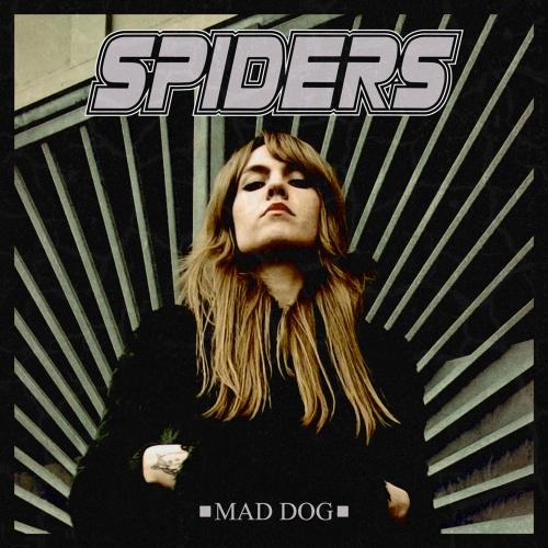 SPIDERS_MadDog_1000pix