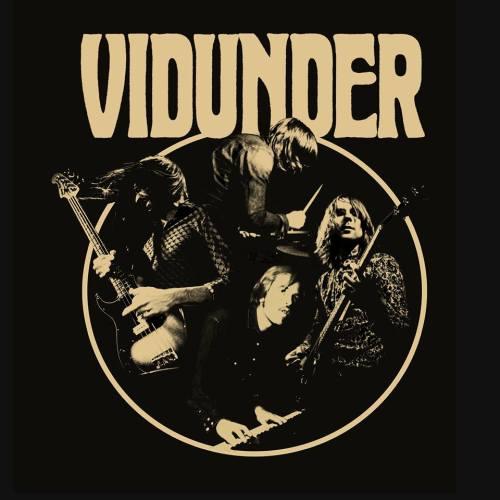 vidunder_logo